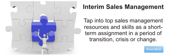 Interim Sales Management